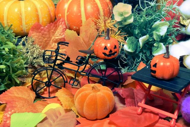 ハロウィン〔小粒かぼちゃ〕